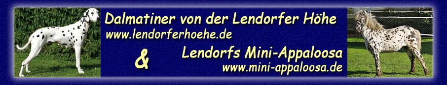 http://www.lendorferhoehe.de/Seitentitel_2012_Kopie.jpg